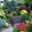 Garden Flower potatura piante