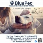 Blue Pet Srl