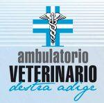 Clinica Veterinaria Destra Adige