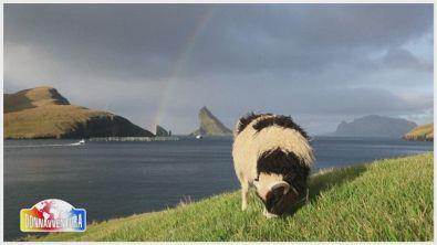 Anticipazione Puntata 5 - Donnavventura Grand Raid del Trentennale: dall'Islanda all'Equatore
