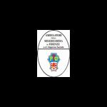 Ambulatori della Misericordia di Firenze