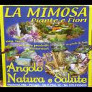 La Mimosa Piante e Fiori - Articoli da Regalo