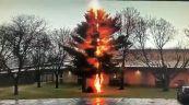 Fulmine colpisce e distrugge albero: le impressionanti immagini