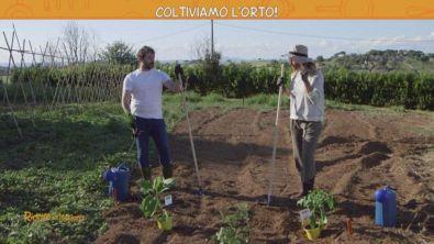 La rubrica del giardinaggio: l'orticoltura