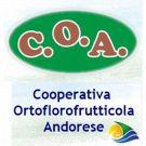 Cooperativa Ortoflorofrutticola Andorese