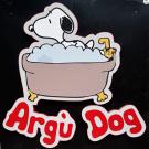 Argù Dog