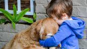 Bambino vende carte rare per curare il cane: la sorpresa