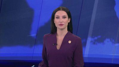 Cane ruba il microfono a giornalista durante diretta tv