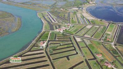 La laguna prima di Venezia
