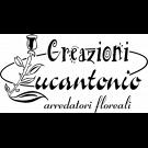 Creazioni Lucantonio