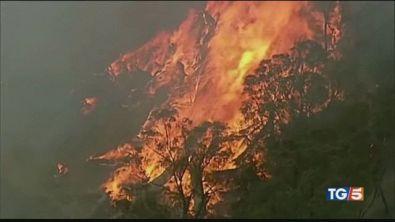 Australia, ancora alle prese con gli incendi