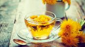 Bevanda ai fiori di tarassaco, elisir detox a costo zero