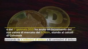 Shiba Inu Crypto, cos'è e quanto si guadagna