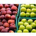 Frutta zanei