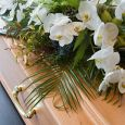 NAIBO ONORANZE FUNEBRI  - onoranze funebri