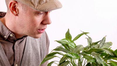 Si potrà parlare alle piante, ecco come