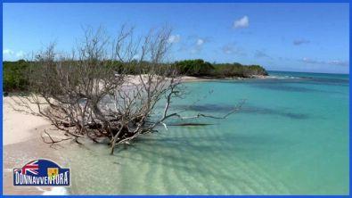 """Una perla turchese nel Mar dei Caraibi: Turks and Caicos"""