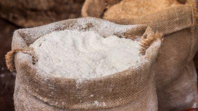 Farina Manitoba, le differenze con le altre farine e quando usarla