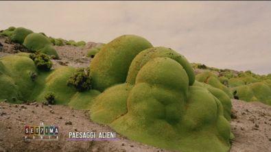 Paesaggi alieni