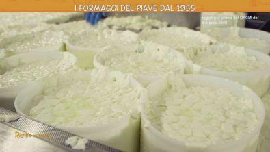 I formaggi freschi del Trevigiano
