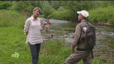 Pesca sul fiume