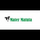 Allevamento Jack  Russell Terrier Mater Matuta