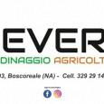 SEVERINO - GIARDINAGGIO - AGRICOLTURA - ANIMALI GIARDINAGGIO - SERVIZIO