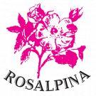 Albergo Meuble' Rosalpina