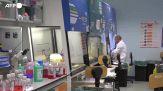 Dai batteri osservati in Hd, super-antibiotici per combatterli