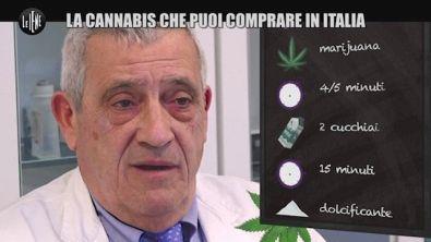 La cannabis che puoi comprare in Italia
