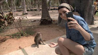 Un selfie con le scimmie?