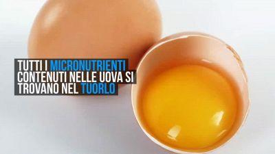 Uova, meglio mangiare l'albume o il tuorlo?