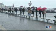 Flagellato il Sud, Venezia da record