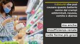 Ritirati cibi con E.coli e Listeria, quali sono i prodotti incriminati