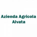 Azienda Agricola Alvata