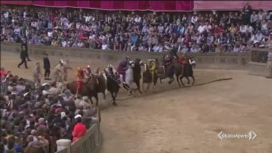 Palio: muore il cavallo caduto