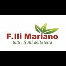 Fratelli Mariano 2000