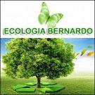 Ecologia Bernardo