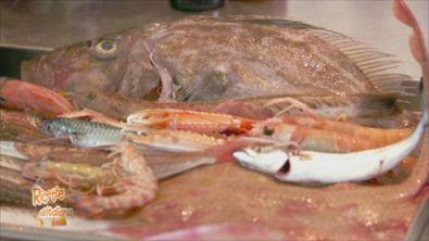 Il pescato di Porto San Giorgio
