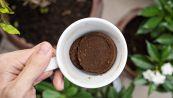 Il caffè come deodorante: come eliminare i cattivi odori