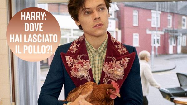 Harry Styles entra in un fish & chips in compagnia di un pollo...