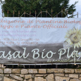 Azienda Agricola Casal Bio Plant vivai
