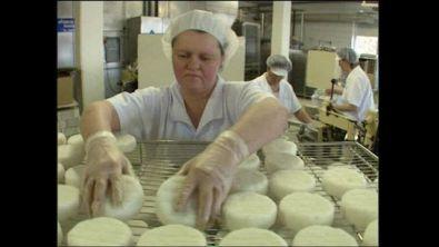 Il formaggio Camembert