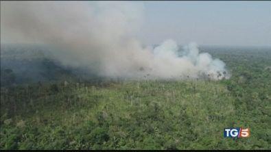 Brucia l'Amazzonia polmone della terra