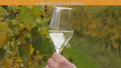 Treviso e il suo Prosecco Doc