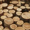Garofalo L'arte dell'Arredo arredamenti in legno