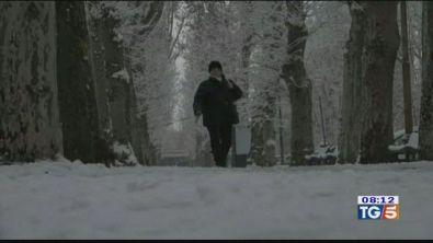 Gelo dalla Siberia
