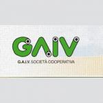 G.A.I.V.