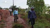 La Colombia sterilizza 24 degli 80 ippopotami di Pablo Escobar