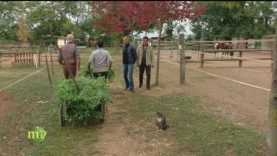 Integrare un progetto sociale in un'attività agricola